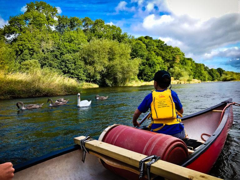 racquety farm family canoe adventure river wye swan nature wildlife